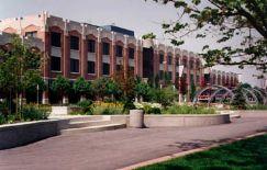 ヨーク大学.jpg